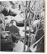 Cut Stone Blocks Backyard Snow Aberdeen South Dakota 1965 Black And White Wood Print