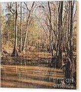 Cypress Waterway Wood Print