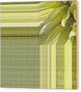 Dahlia Named Canary Fubuki Wood Print