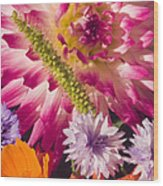 Dahlia Zinnia Bachelor's Buttons Flowers Wood Print