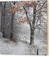 Danish Winter  Wood Print