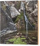 Darwin Falls Wood Print