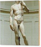 David By Michelangelo Wood Print