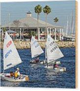 Davis Island Yacht Club Wood Print