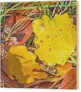 Dead Poplar Leaves Wood Print