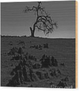 Death Of An Oak Tree Wood Print
