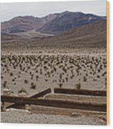 Death Valley Mountains Wood Print