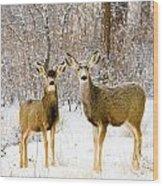 Deer In The Snowy Woods Wood Print
