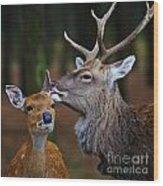 Deer Love Wood Print