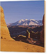 Delicate Arch, Arches National Park Wood Print