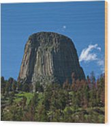 Devil's Tower Wood Print