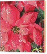 Diamond Encrusted Poinsettias Wood Print