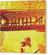 Diatom Wood Print