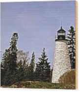 Dice Head Lighthouse Wood Print