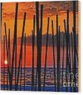 Digital Painting Of Looking Through Beach Umbrella Poles At Sunset Wood Print