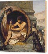 Diogenes Wood Print