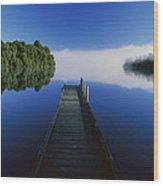 Dock On Lake Mapourika Wood Print
