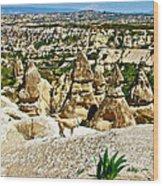 Dog Looking At Fairy Chimneys In Cappadocia-turkey Wood Print