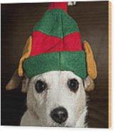 Dog Wearing Elf Ears, Christmas Portrait Wood Print