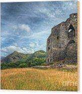 Dolbadarn Castle Wood Print