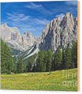 Dolomites - Catinaccio Mount Wood Print