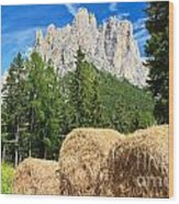 Dolomiti - Alpine Pasture Wood Print