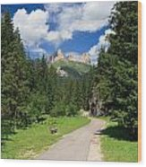 Dolomiti - Fassa Valley Wood Print
