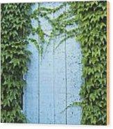 Door Framed By Plants Wood Print