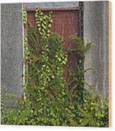 Door Of Old House Wood Print