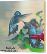 Double Hummer Wood Print