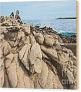 Dramatic Lava Rock Formation Called The Dragon's Teeth In Maui. Wood Print
