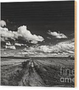 Drifting Clouds Wood Print