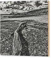 Driftwood Mono Wood Print