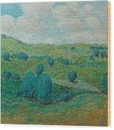 Dry Hills Wood Print
