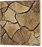 Dry Land Wood Print