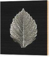 Dry Leaf 1 Wood Print