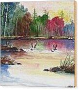 Duck Lake Wood Print