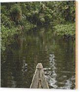 Dugout Canoe In Blackwater Stream Wood Print