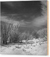 Dunas Wood Print