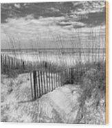 Dune Fences Wood Print by Debra and Dave Vanderlaan