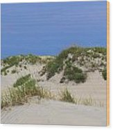 Dunes And Grasses 11 Wood Print