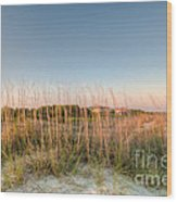 Dunes To Lighthouse Wood Print