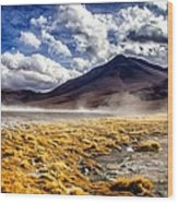 Dusty Desert Road Bolivia Wood Print