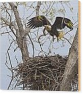 Eagle Nest Wood Print