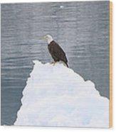 Eagle On Ice Wood Print