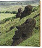 Easter Island 17 Wood Print