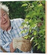 Elderly Lady Gardening Wood Print