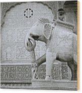The Beautiful Elephant Wood Print