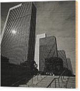 Empire State Plaza Wood Print