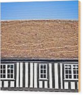 English House Wood Print by Tom Gowanlock